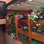 Jardin vertical hecho con palets