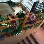 jardin-vertical-de-palets-2