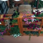 jardin-vertical-de-palets-3