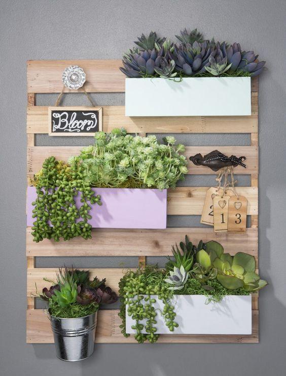 estanteria de palets para plantas